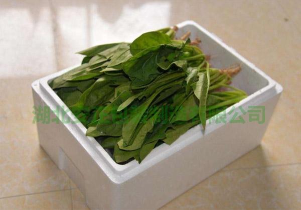 荆州泡沫包装-蔬菜泡沫包装箱